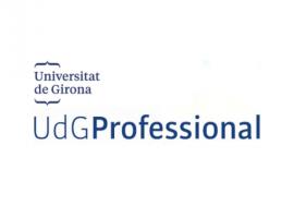 UdGProfessional
