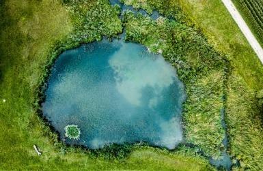 Basses i estanys temporals emeten CO2