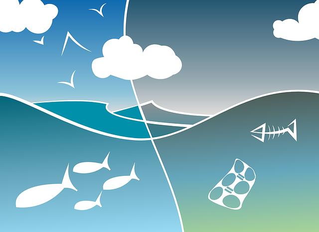 Contaminació mar