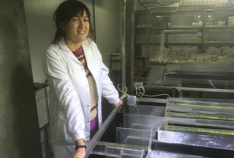 Rodríguez-Mozaz, en un dels laboratoris de l'ICRA J. TRILLAS.